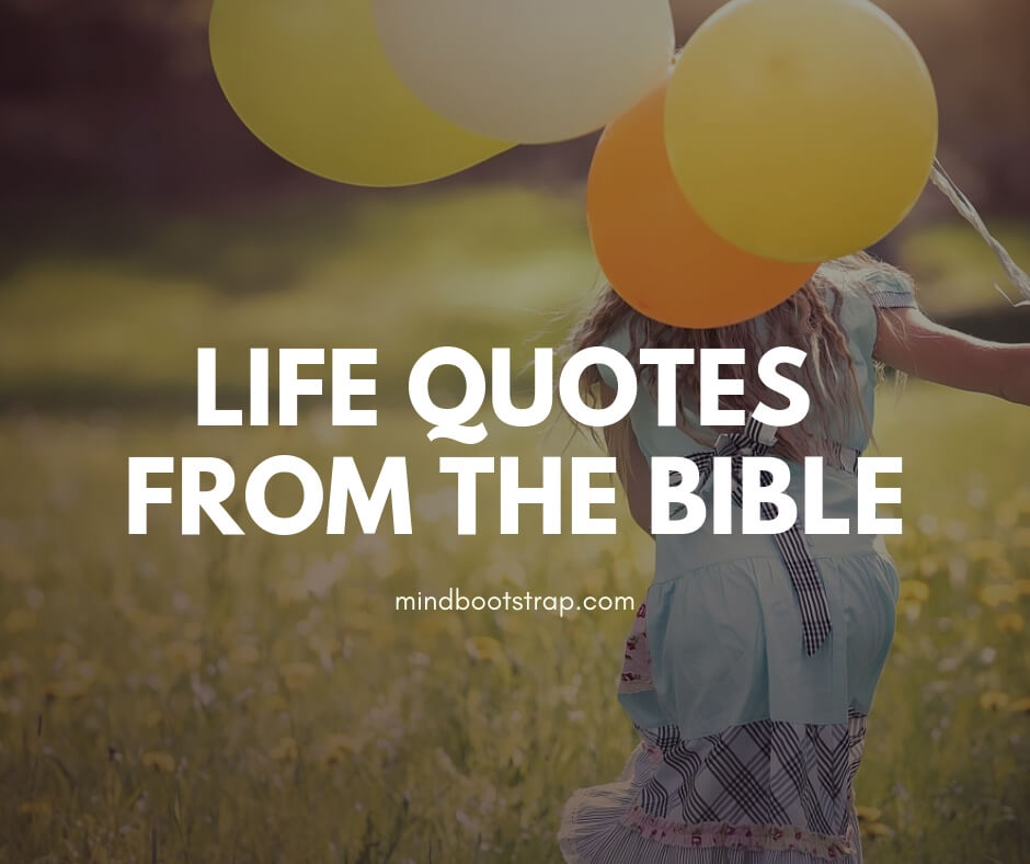 Life Quotes from the Bible