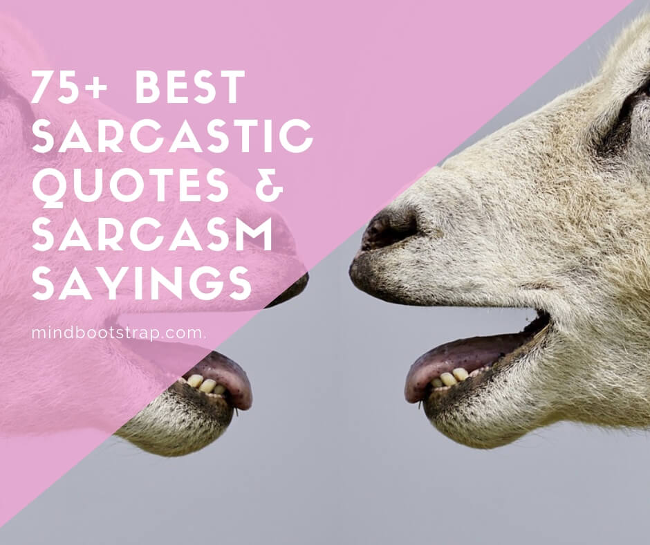 best sarcastic quotes & sarcasm sayings