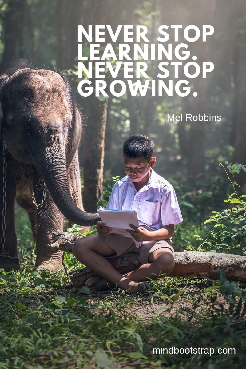 short learning quotes Never stop learning. Never stop growing. ~Mel Robbins