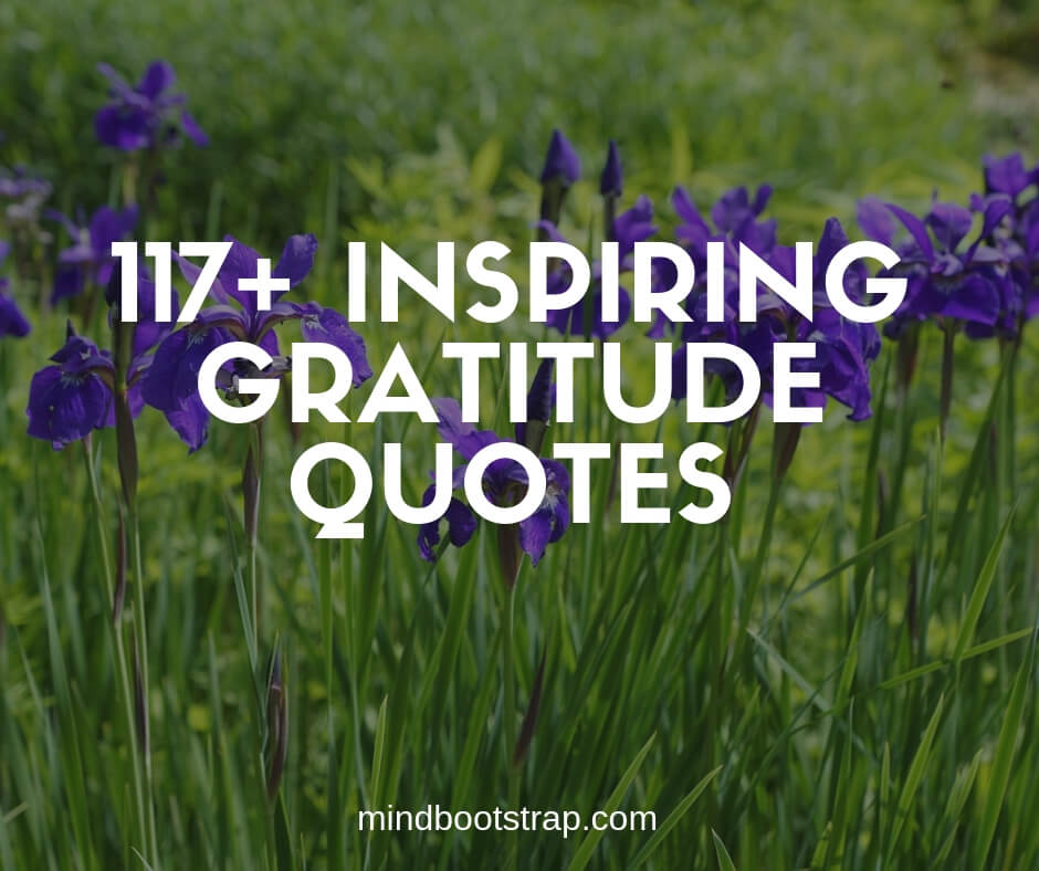 inspiring gratitude quotes and sayings on life love images